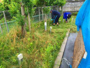 植栽剪定作業