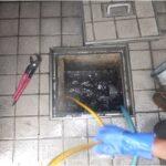 排水管洗浄写真2
